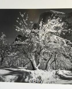 Ansel Adams Vintage Half Dome Orchard Yosemite BxW Signed Original 15 x 19 COA